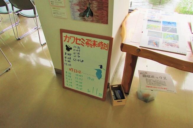 mizumoto170730-105.jpg