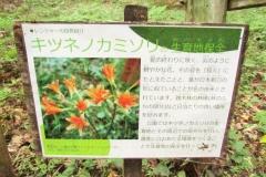 noyamakita170806-202.jpg