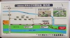 shioya170603-201.jpg