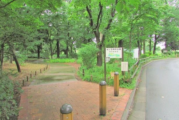 syakujii170814-110.jpg