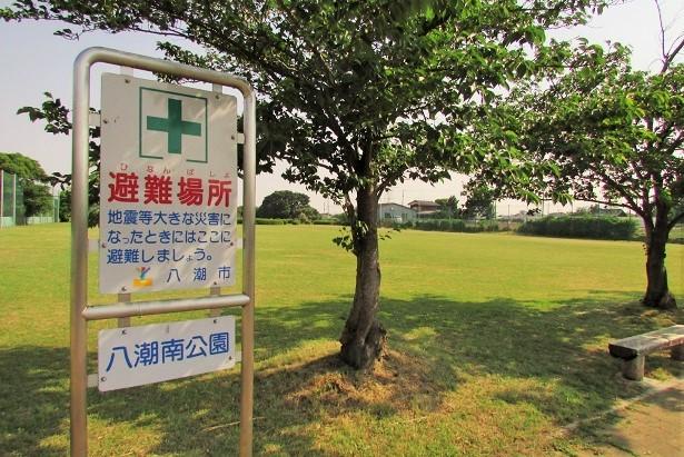 yashiominami170520-106.jpg