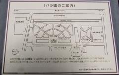 yono170917-201.jpg