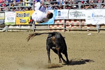 blog (6x4@300) Yoko 49 Bull Jumper, Manu Lataste_DSC9345-4.30.17.(2).jpg
