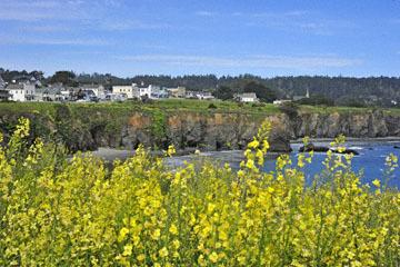 blog 30 Mendocino, Downtown Hiking Trail, CA_DSC6743-4.16.16.(2).jpg