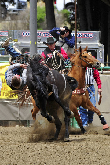 blog (4x6@300) Yoko 83 Rowell Ranch Rodeo, Bareback Bronco 1, Cameron Hopper-Craig (NS Idaho