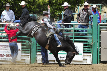 blog (6x4@300) Yoko 83 Rowell Ranch Rodeo, Bareback Bronco 1, Cameron Hopper-Craig (NS Idaho