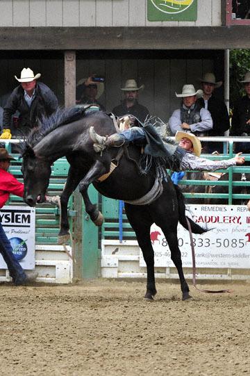 blog (4x6@300) Yoko 83 Rowell Ranch Rodeo, Bareback Bronco 3_DSC9711-5.21.16.(1).jpg