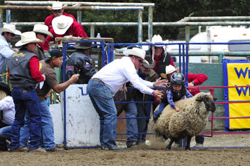 blog 83 Rowell Ranch Rodeo, Mutton Busting 3_DSC9578-5.21.16.(1).jpg