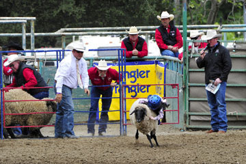 blog 83 Rowell Ranch Rodeo, Mutton Busting 2, Kagan_DSC9575-5.21.16.(1).jpg