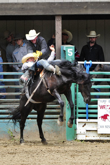 blog 83 Rowell Ranch Rodeo, Bareback Bronco 2, (RR MT