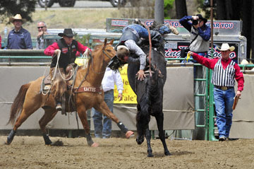 blog 83 Rowell Ranch Rodeo, Bareback Bronco 1, Cameron Hopper-Craig (NS Idaho