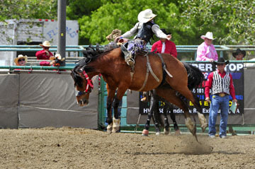 blog (6x4@300) 87 Rowell Ranch Rodeo, Saddle Bronco 16, Ryder Wright (64