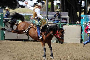 blog (6x4@300) 87 Rowell Ranch Rodeo, Saddle Bronco 14, Quincy Crum (67