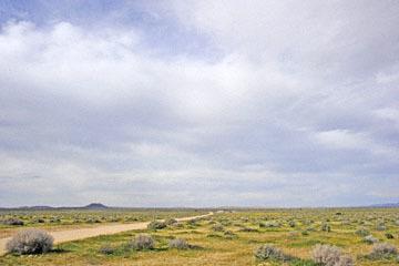 blog 11 Mojave Desert, CA|58W near Mojave, Goldfields_DSC6939-3.19.17.(2).jpg