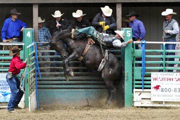 blog 84 Rowell Ranch Rodeo, Bareback Bronco 5, Blain Davies (?) 2_DSC9818-5.21.16.(2).jpg