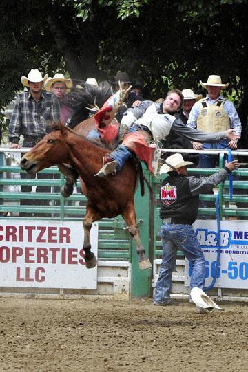 blog 84 Rowell Ranch Rodeo, Bareback Bronco 4, Morgan Wild (73