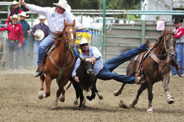 blog 84 Rowell Ranch Rodeo, Steer Wrestling 1, Cody (6.0 Hawaii) 2_DSC9853-5.21.16.(2).jpg