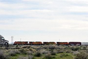 blog 11 Mojave Desert, CA|58W near Mojave, Coreopsis?, Freight Train_DSC6981-3.19.17.(2).jpg