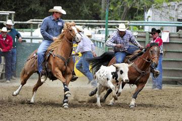 blog 84 Rowell Ranch Rodeo, Steer Wrestling 6, Tommy Cook (7.4 TX)_DSC9889-5.21.16.(2).jpg