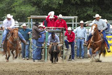 blog 84 Rowell Ranch Rodeo, Steer Wrestling 4, Clayton Morrison (NT) 2_DSC9882-5.21.16.(2).jpg