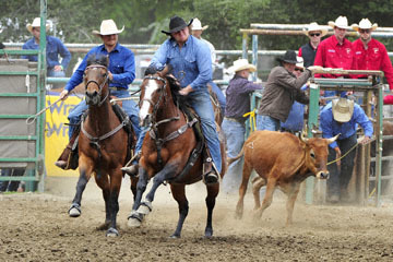 blog 84 Rowell Ranch Rodeo, Steer Wrestling 3, Kelly O'Day (NT) 2_DSC9880-5.21.16.(2).jpg