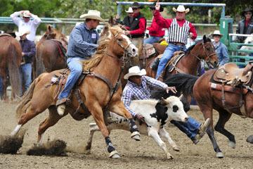 blog 84 Rowell Ranch Rodeo, Steer Wrestling 6, Tommy Cook (7.4 TX) 2_DSC9895-5.21.16.(2).jpg