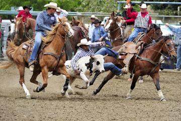 blog 84 Rowell Ranch Rodeo, Steer Wrestling 6, Tommy Cook (7.4 TX)_DSC9894-5.21.16.(2).jpg