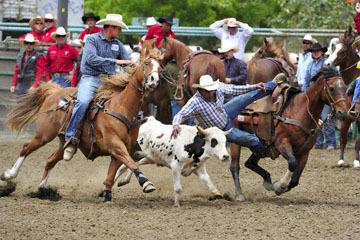blog 84 Rowell Ranch Rodeo, Steer Wrestling 6, Tommy Cook (7.4 TX)_DSC9893-5.21.16.(2).jpg