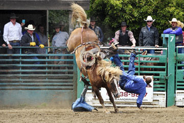 blog 85 Rowell Ranch Rodeo, Ranch Saddle Bronco 3, Philips (NT