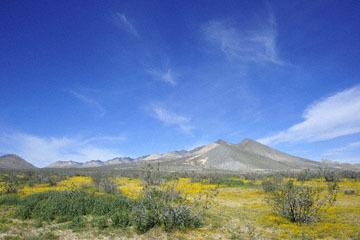 blog 12 Mojave, CA to Beatty, NV, CA|14N near Mojave, Mojave Desert, 395N, Goldfields_DSC7106-3.20.17.jpg