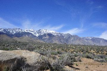 blog 12 Mojave, CA to Beatty, NV, CA|14N near Mojave, Mojave Desert, 395N, Sage Road & the Sierra Nevada_DSC7118-3.20.17.jpg