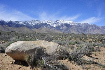 blog 12 Mojave, CA to Beatty, NV, CA|14N near Mojave, Mojave Desert, 395N, Sage Road & the Sierra Nevada_DSC7117-3.20.17.jpg