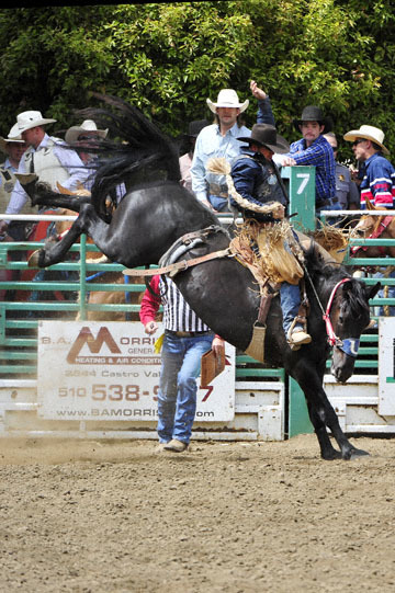blog 85 Rowell Ranch Rodeo, Saddle Bronco 4, Jesse James Kirby (66