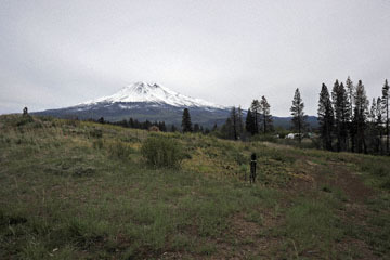 blog 45 Weed to Prineville 97E-126E, Mt. Shasta, CA_DSC0204-4.26.16.jpg