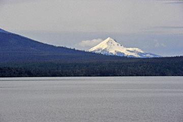 blog 45 Weed to Prineville 97E-126E, Lower Klamath Lake, Mt. McLaughlin, CA_DSC0253-4.26.16.jpg