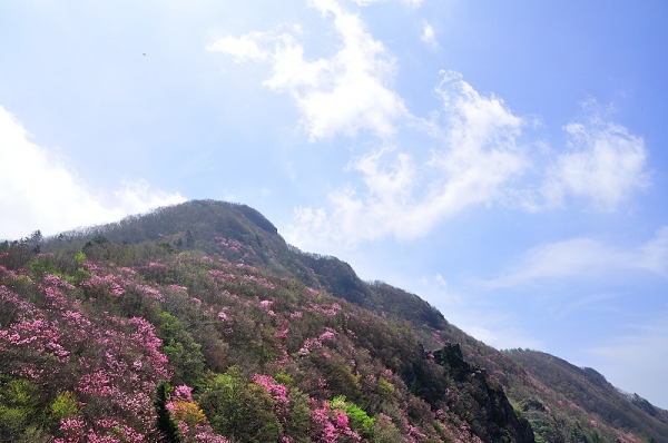 1西赤石山17.05.14