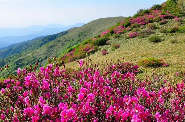 2笠取山17.05.26