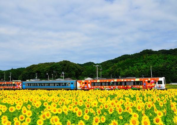 1列車と17.07.08