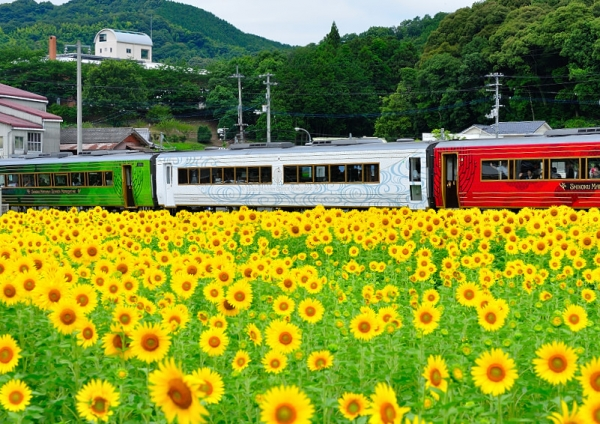 10列車と17.07.08
