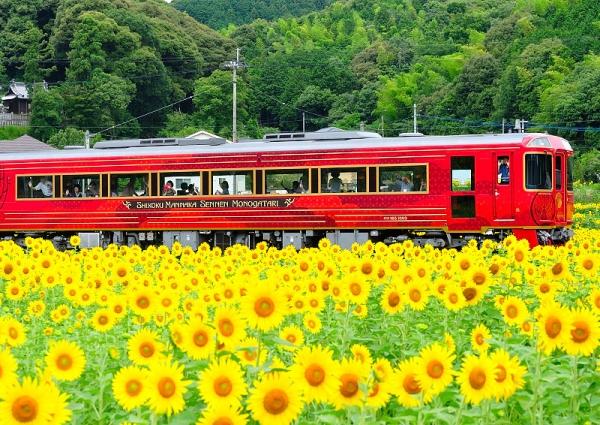 9列車と17.07.08