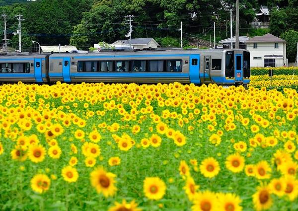 7列車と17.07.08