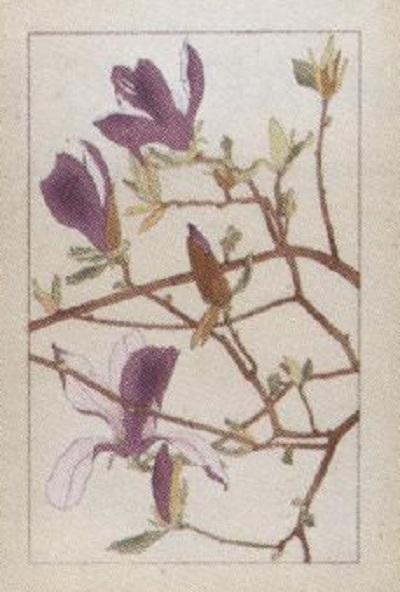イメージ (430)