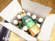 ヘルシア緑茶12本セット