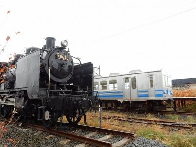 DSCN6596.jpg
