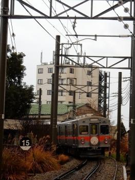 DSCN7164s.jpg
