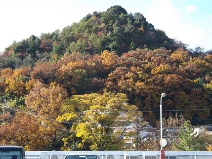 石手寺の山
