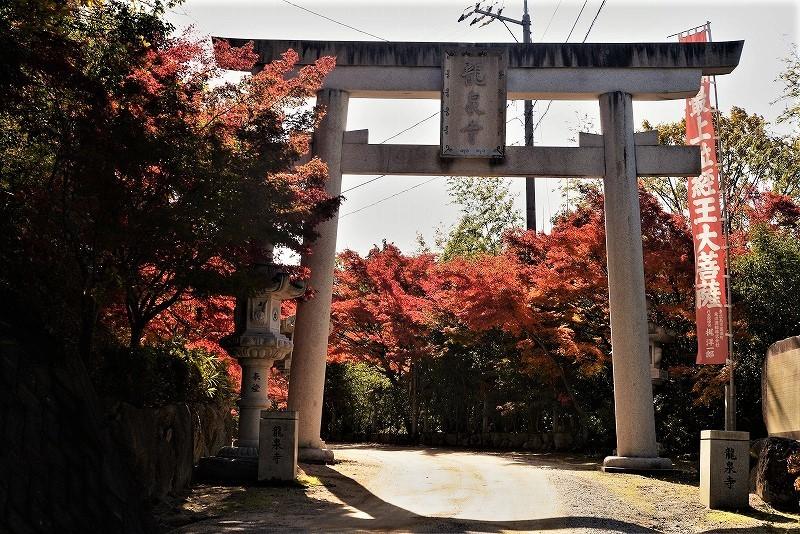 龍泉寺 の紅葉1