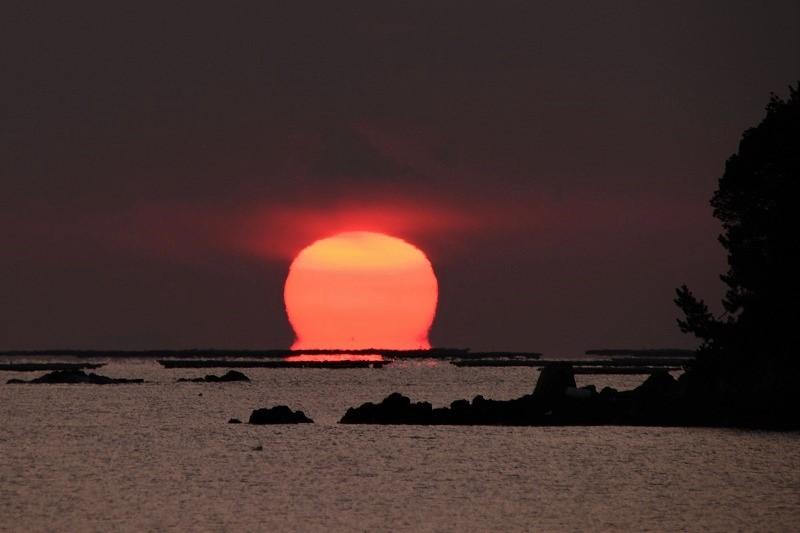 達磨太陽5-2
