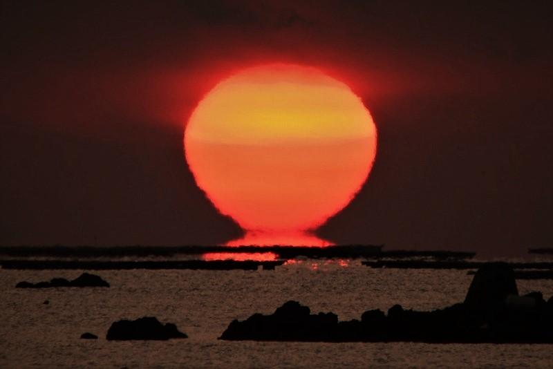 達磨太陽8