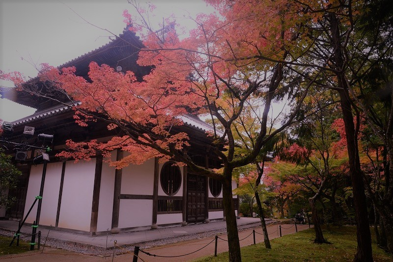 宝福寺10